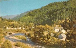 DOWNIEVILLE, CA Union Oil Company Highway 49 76 Gasoline c1950s Vintage Postcard