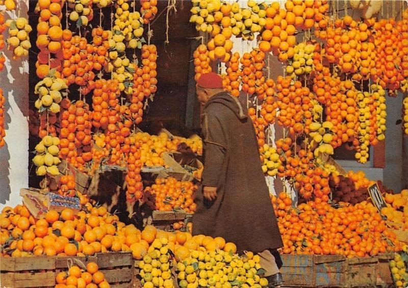 Tunisia Oranges et Citrons Hammamet Tunisie