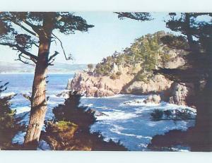 Pre-1980 PARK SCENE Point Lobos State Park - Carmel & Monterey CA H2047