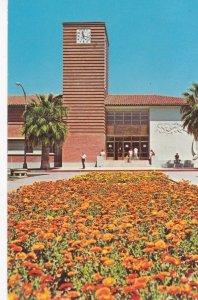 TUCSON , Arizona , 1973 ; University of Arizona