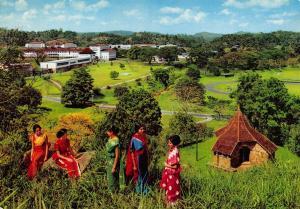 Vintage Postcard University Park, Peradeniya, Ceylon, Sri Lanka, by Kruger #158