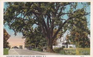 GENEVA, New York, 1900-1910´s; Lafayette Tree And Lafayette Inn, Classic Cars