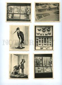 130385 Belgium Brussels Museum of BELGIAN CONGO Set 10 cards