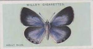 Wills Vintage Cigarette Card British Butterflies No. 7 Holly Blue 1927