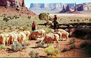 Arizona Monument Valley Navajo Indian Reservation Sheep Raisinig