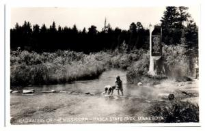 RPPC Headwaters of the Mississippi, Itasca State Park, MN Real Photo Postcard