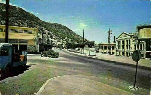 Algeria Mers el Kebir L'Avenue Principale Main Avenue Car Postcard