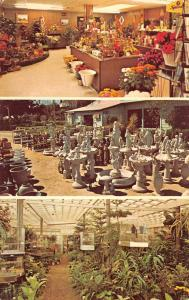 Laredo Texas Garden Center Flower Shop Vintage Postcard K89301