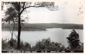 D73/ Gamaliel Arkansas AR Real Photo RPPC Postcard 50s Lake Norfork Three Oaks