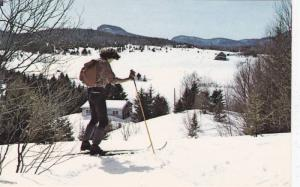 A Scenic View From One Of The Many Cross Country Ski Trails, Ste-Agathe-des-M...