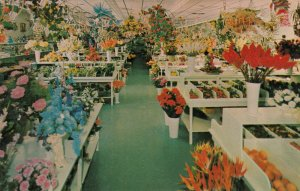 St Petersburg , Florida, 1950-60s ; EISS Flower Store