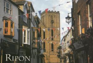 Ripon on Fete Carnival Day Street Flags Postcard