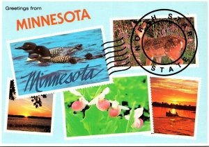 Minnesota St Paul Greetings From The North Star State Multi VIew