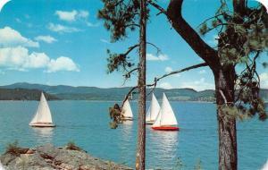 ID, Idaho  SAILBOATS on LAKE COEUR D'ALENE  c1960's Chrome Rounded Edge Postcard