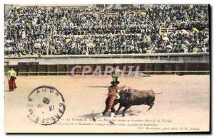 Old Postcard Bullfight Bullfight Second Phase