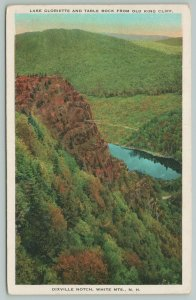 White Mountains New Hampshire~Dixville Notch Trees And River~1920s Postcard