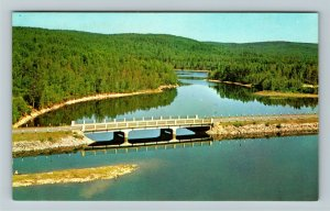 ON- Ontario, Scenic View on Hwy 60, Natural Wilderness Views, Chrome Postcard