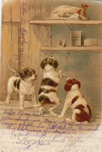 CHRISTMAS; Dogs trying to get to prepared goose on shelf, PU-1904; TUCK # 1708