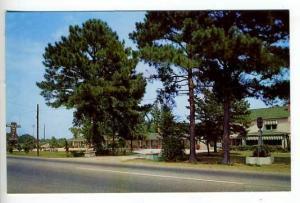 Florence SC Breezewood Motel Postcard