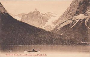 Canada British Columbia Emerald Peak Emerald Lake Near Field