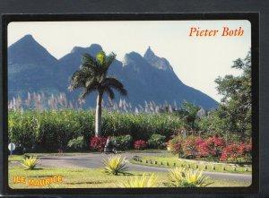 Mauritius Postcard - Pieter Both   T9393