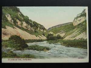 Derbyshire Buxton IN ASHWOOD DALE c1904 Postcard by J.W.S. 2231