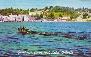Canada Greetings From Red Lake Ontario