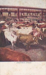 Stockyards Chicago Illinois 1909