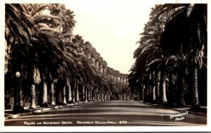 California Beverly Hills Palms On Beverly Drive Real Photo