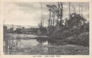 Twin Lakes Conneticut~Lily Cove~1920s B&W Albertype Postcard