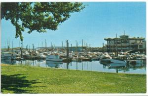 Canada, Oak Bay Marina, Victoria, BC, unused Postcard