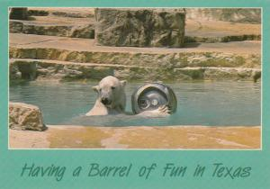 BROWNSVILLE, Texas, 1970s-80s; Polar Bear in Water at Zoo