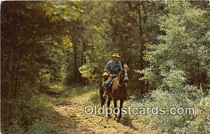Natchez Trace Parkway Horseman, Nashville, Tennessee Postcards Post Cards Old...