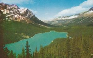 Canada Mount Patterson and Peyto Lake Icefields Highway Alberta