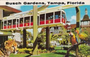 Florida Tampa Busch Gardens Skyrail Safari & Old Swiss House 1973