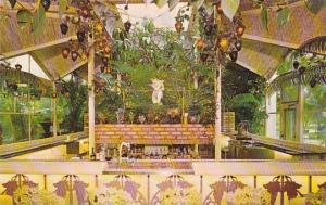 Florida Clearwater The Famous Kapok Tree Inn North Haines Road