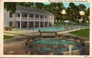 Florida Green Cove Springs Spring and Bathing Pool 1944 Curteich