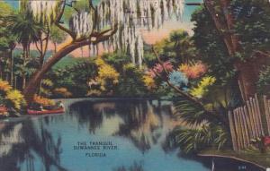 Florida The Tranqul Suwanne River 1950