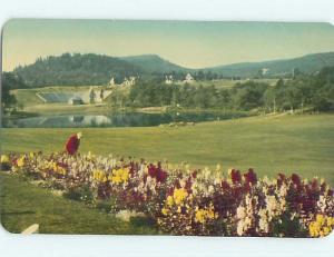 Pre-1980 TOWN VIEW SCENE Fundy National Park - Alma New Brunswick NB p9945