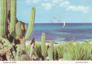 Netherland Antilles Seaview At Aruba