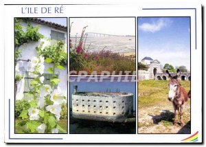 Modern Postcard Images of France's Charente Maritime Ile de Re and White colo...
