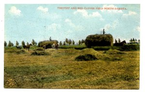 ND - Harvesting Timothy & Red Clover