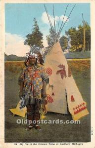 Big Joe of the Ottawa Tribe Northern Michigan, Michigan, MI, USA Indian Unused