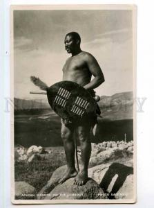 247948 SOUTH AFRICA warrior on lookout Vintage photo RPPC