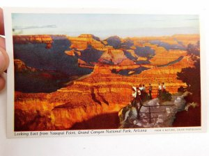 Vintage Yavapai Observation Station, Canyon Village Fred Harvey Postcard P30