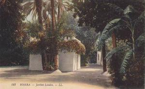 Jardins Landon, Biskra, Algeria, Africa, 1900-1910s