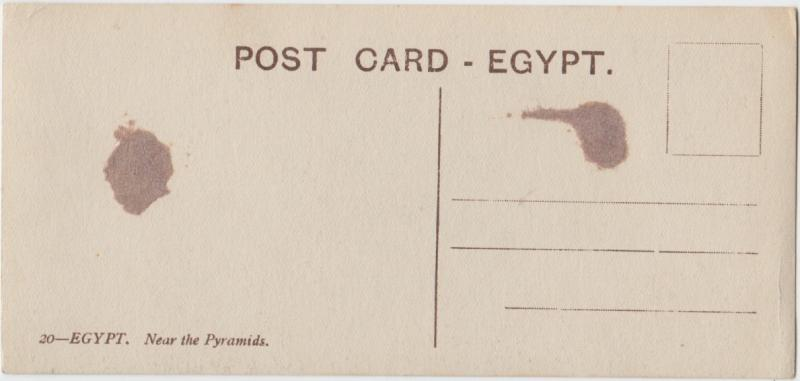 Egypt, Near the Pyramids, people and camels, Postcard