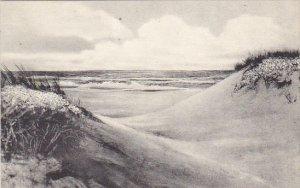 Sea Oats On Sand Dunes and Sea Florida Albertype