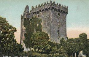 Blarney Castle , Co. Cork , Ireland , 00-10s