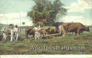 Ploughing in Cuba Republic of Cuba Unused